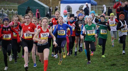 Hessische Meisterschaften im Crosslauf in Altenstadt – 5. Platz in der HSV-Mannschaft WJU14